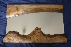 Lizard on carved frame